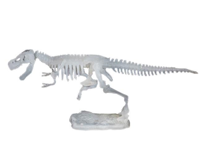 【品牌】泰国DIGITUP 【品名】DIGITUP手工考古恐龙挖掘骨架化石(夜光霸王龙可挖一次) 【产地】泰国 【材质】天然岩泥 【规格】泥盘一个、工具一套、说明书一份。 【尺寸】盒子尺寸:13.5*21*5.5cm,恐龙骨架拼好后长约20-25cm 【适用人群】建议6岁以上 【产品特点】 *纯天然岩泥 *天然树脂 *造型逼真 *激发学习兴趣 *恐龙的关节是可以活动 【品牌介绍】 泰国 Dig It Up公司(译作:挖出来),FOZEX 恐龙考古挖掘玩具的创造者,拥有12年的历史。一直被模仿,从未被超越!